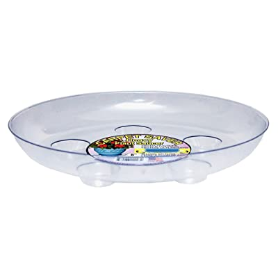 CWP DS-800 Heavy Gauge Footed Carpet Saver Saucer, 8-Inch Diameter, Clear : Garden & Outdoor