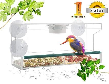 Amazon.com: VIITION - Comedero para pájaros (acrílico ...