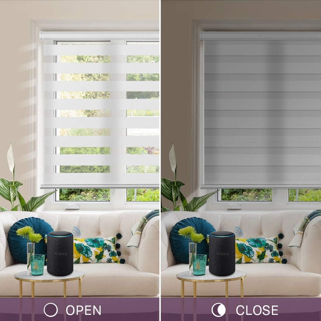 Graywind Motorized Zebra Sheer Shades Horizontal Window Shades Light Filtering Roller Shades Freestop Window Blind