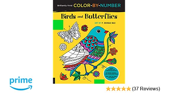 Amazon Brilliantly Vivid Color By Number Birds And Butterflies