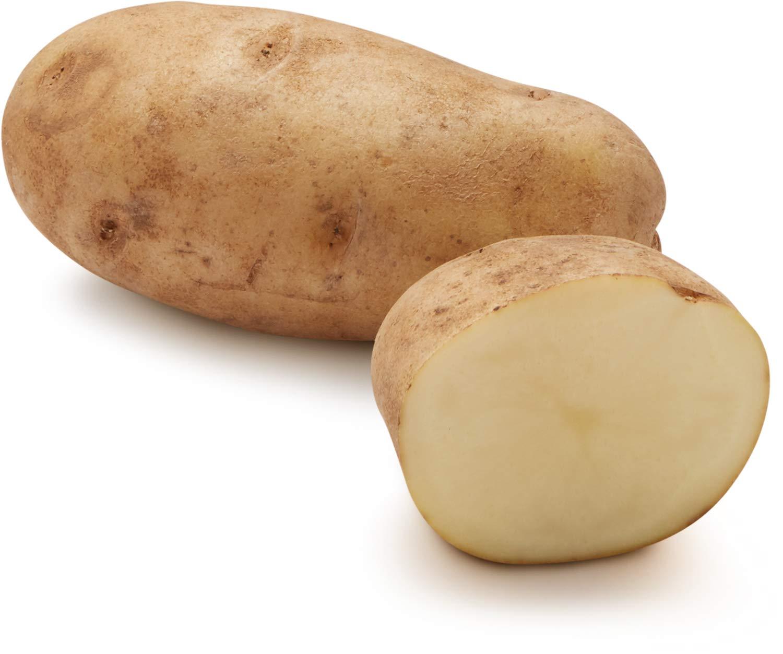Organic Russet Potato, One Large