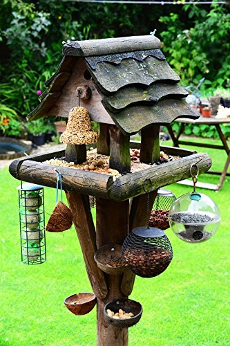 - Home Comforts Acrylic Face Mounted Prints Feeding Station Bird Food Bird Table Bird House Print 18 x 24. Worry Free Wall Installation - Shadow Mount is Included.