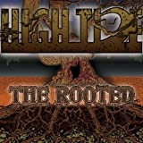 Rooted by High Tide (2010-04-20)
