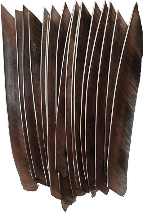 """50PCS 4/"""" Archery Arrow Natural Feathers Right Wings DIY Feather Hunting"""