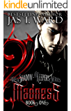 MADNESS: Book One of The Shadow-Keepers Series