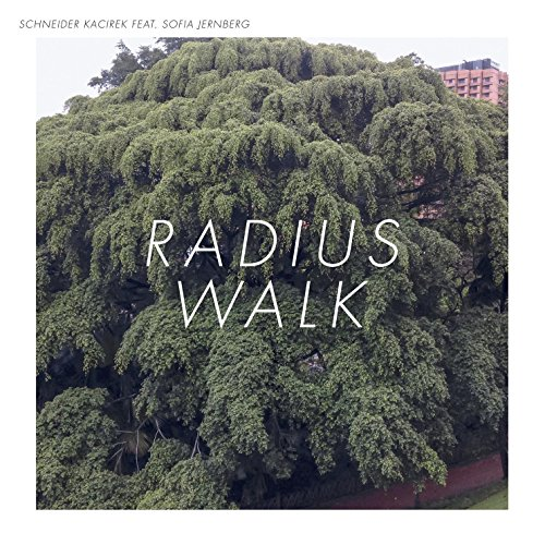 Schneider Kacirek - Radius Walk (2017) [WEB FLAC] Download