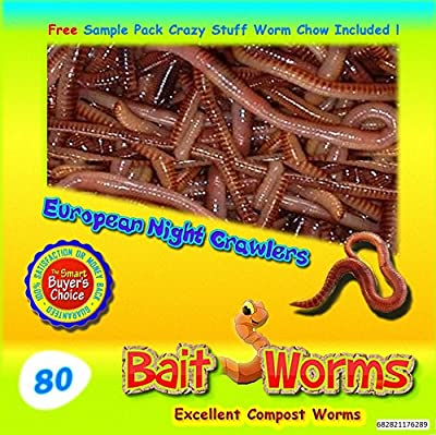 Insectsales.com Fishing Bait.(80 Live European Night Crawlers).Excellent For Compost-Garden-Lawn