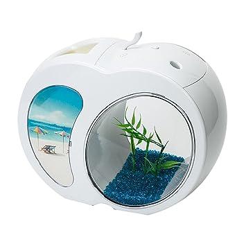 KEM - Cuenco para Mascotas (acrílico, Mesa de Escritorio, Acuario, con luz LED alimentada por USB): Amazon.es: Productos para mascotas