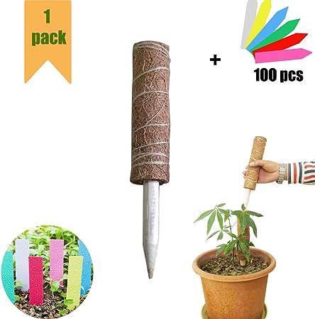 SKINNYBUNNY Garden Plastic Plant Ties 200PCS Green Gardening Tie Garden Tool Vine Fixed Multi-Use for Secure Vine