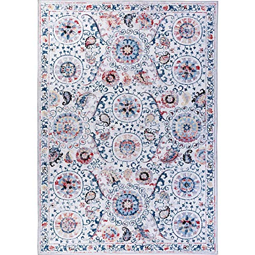Oriental Rug Paisley Rug - DECOMALL Traditional Vintage Area Rug Bohemian Distressed Oriental Persian Rug for Living Room Bedroom, 5'x7'