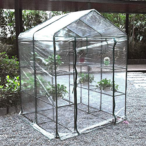 Younar Walk-in Greenhouse 2 Tier 8 Shelves with Clear PVC Cover Indoor Outdoor Growing Seeds Seedlings Tending Potted Plants 56 in. L x 56 in. W x 77 in. H