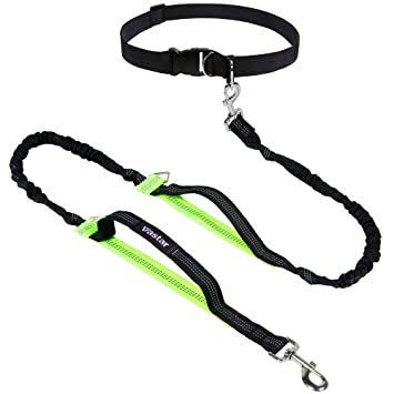 Vastar Retractable Hands Free Dog Leash With Dual Bungees For Dogs