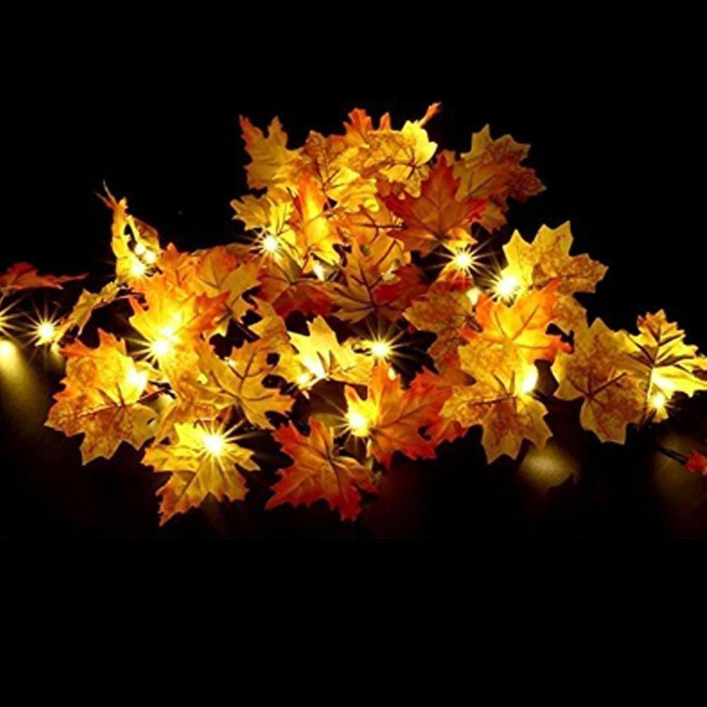 Batteriebetriebene Lichterkette,Goldbeing Danksagungstag Dekorationen Beleuchtete Fallgirlande, Erntedankfest Dekor Halloween Lichterkette 2,5 Meter 20 LEDs, Danksagung Geschenk