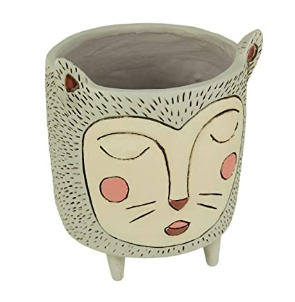 Amazon.com: Macetas de resina Allen Designs Purrs para ...