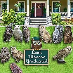 Graduation Yard Decoration- Look Whoooo Graduated - Owls - 23 stakes