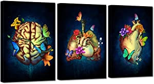iHAPPYWALL 3 Pieces Human Anatomy Set Canvas Wall Art Heart Lungs Brain Intestine Anatomy Organs with Colorful Butterfly Flower Medical Science Artwork for Medical Clinic Doctor Office Ready to Hang