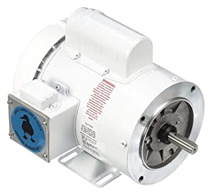 Leeson 3/4 HP Washdown Motor,Capacitor-Start,1725 Nameplate RPM,115/230 Voltage,Frame 56C