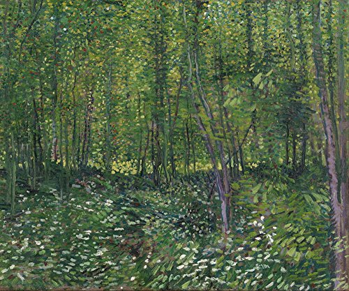 (Berkin Arts Vincent Van Gogh Giclee Canvas Print Paintings Poster Reproduction ... (Trees and Undergrowth))
