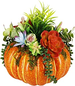 "winemana Thanksgiving Decorations Pumpkin with Plastic Succulents, 8.8"" x 9.8"" Bright Orange Artificial Pumpkin and Plastic Succulents Fall Autumn Decor for Office Bedroom Kitchen Party Harvest Day"