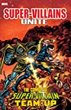 img - for Super Villains Unite: The Complete Super-Villain Team-Up (Super-Villain Team-Up (1975-1980)) book / textbook / text book