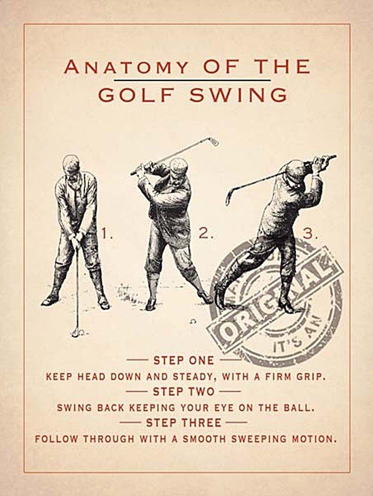 Anatomía of the Golf Swing estilo Vintage Metal Sign: Amazon.es: Hogar
