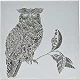 CRAFTERS WORKSHOP TCW636 Template, 12'' x 12'', Wise Owl, White