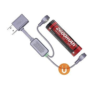 送料無料 18650 6000mAh 専用充電器 18650 2本用 リチウムイオン電池充電器