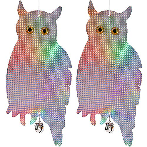 Dyvicl Bird Scare Owl - Bird Repellent Control Scare Device, Holographic Reflective Owl Woodpecker, Squirrels, Possum Rodent Bird Pest Deterrent (2 Pack)