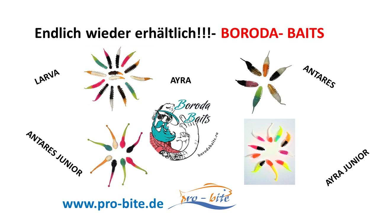 8 Gummik/öder in 55mm L/änge Boroda Baits Softbait Antares Junior//Mixed Color in Knoblauch-Aroma//Inhalt