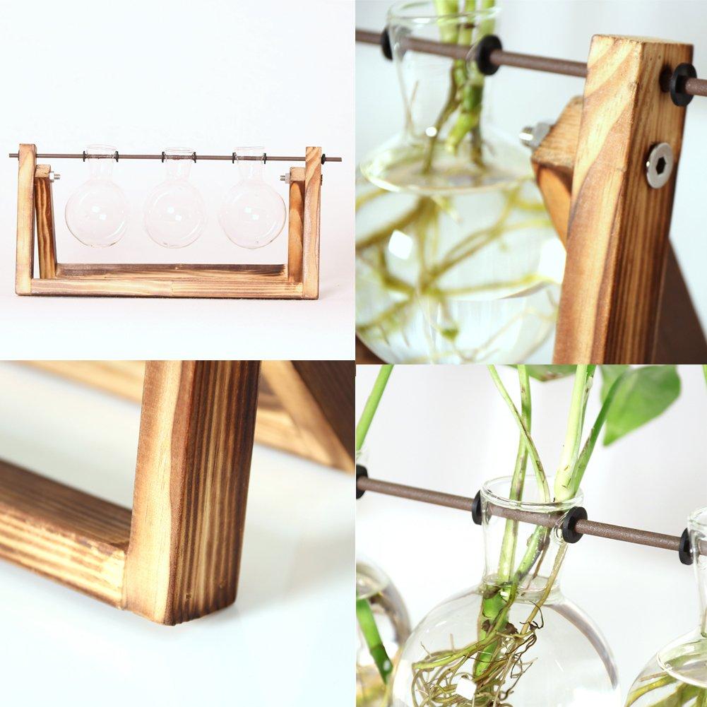Jarrón de cristal GUOLIAN moderno para decoración de macetas - Jarrón transparente vintage marco de madera, ideal para cualquier planta hidropónica, ...