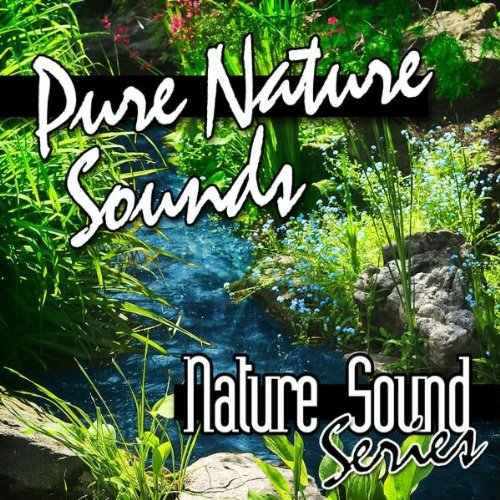 south american rainforest background by nature sound series on