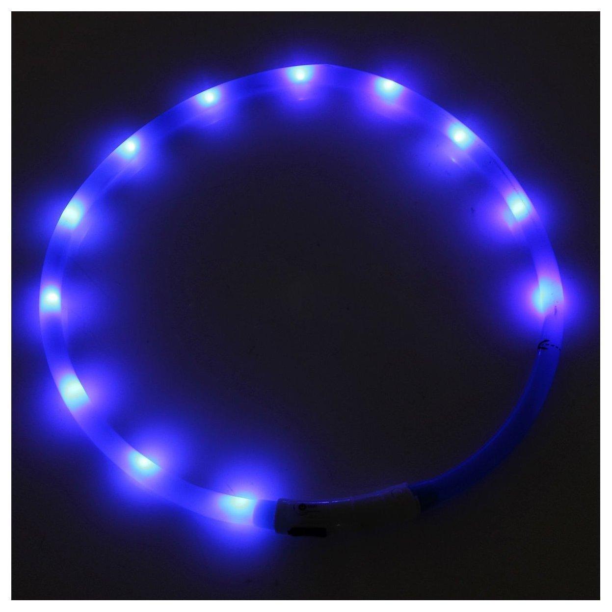 Collier pour chien lumineux clignotant LED - TOOGOO(R) USB rechargeable etanche LED clignotante bande lumineuse collier de ceinture de securite de chien bleu