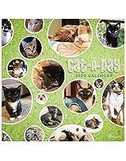 2020 Cat-A-Day Wall Calendar