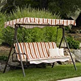 Park Lake Swing Replacement Canopy Review
