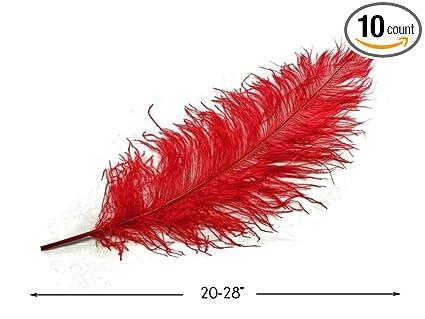 Amazon.com: Plumas de Avestruz 10 piezas 20 – 28
