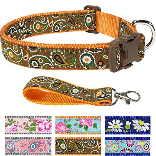 Pet Rejoir Creative Flower Spring Dog Collar Collection- 6 Designer Patterns Holiday Dog Collars- Timeless Iconic Taupe Brown Paisley Dog Collar - Neck 12~15 Adjustable Collar for Small Dogs ()