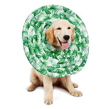 leegoal Collares Isabelinos para Mascotas, Recuperación de la Máscara Protectora del Perro Collar de Recuperación del Perro Impermeable del Collar: ...