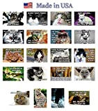 FUNNY CATS postcard set of 20 postcards. Funny cat quotes post card variety pack. Made in USA.