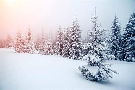 Beliebt Amazon.com : Leyiyi 10x6.5ft Enchanted Winter Forest Backdrop LT12