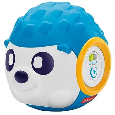 Fisher-Price Think & Learn Rhythm 'n Roll Hedgehog: Toys & Games