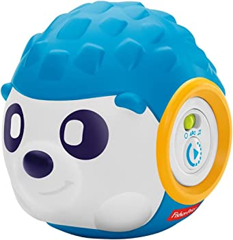Fisher Price Think & Learn Rhythm n Roll Hedgehog