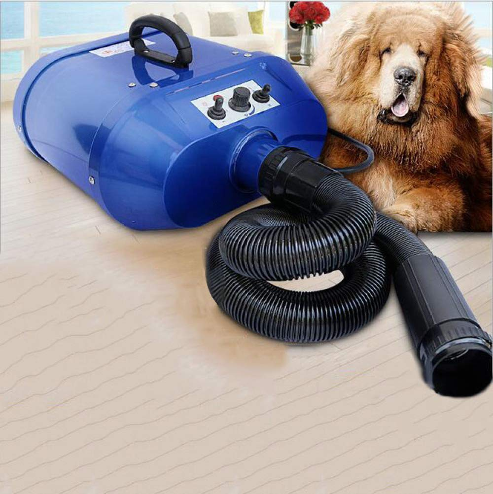 CHQQQ Pet Drye 2800W Low Noise Stepless Speed Regulation Adjustable Temperature Pet Grooming Hair Dryer Flexible Hose 3 Nozzles Dog Cat Hairdryer,bluee