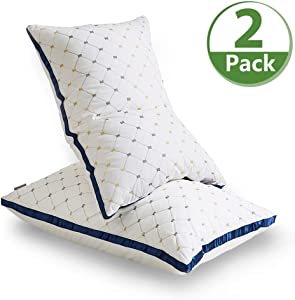 AiAngu Pillows for Sleeping, 2 Pack Premium Hotel Bed Pillows,Breathable Gel-Fiber Down Alternative Cooling Pillow Good for Side Sleeper (White, Standard)