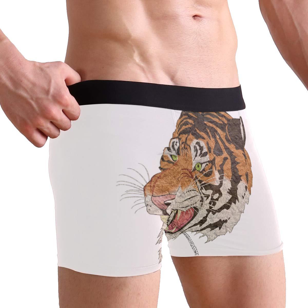 FAJRO Tiger Roaring Art Painting Mens Regular Leg Boxer Brief Underwear