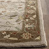 Cheap Safavieh Total Perform Collection TLP722B Hand-Hooked Ivory and Taupe Area Rug (4′ x 6′)