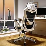 BERLMAN Ergonomic High Back mesh Office Chair with Adjustable Armrest Lumbar Support Headrest Swivel Task Desk Chair…