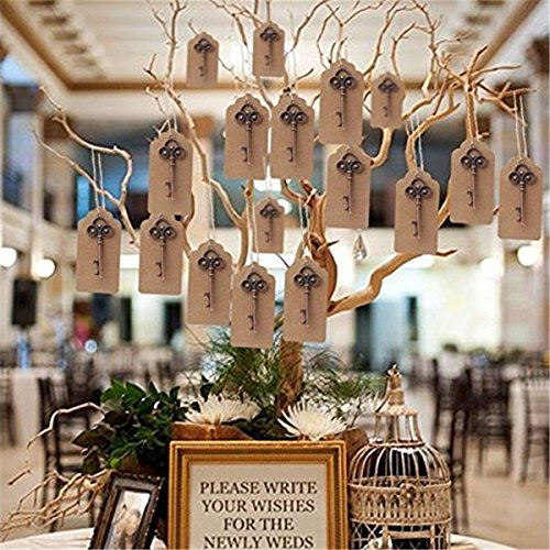 Yansanido Pack of 50 Skeleton Key Bottle Opener 5 styles mixed with Escort Tag Card and Twine for Wedding Favors for Guests Party Favors (mixed 5 styles) by Yansanido (Image #7)