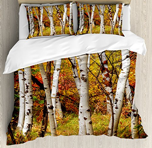 Ambesonne Fall Duvet Cover Set King Size, White Fall Birch Trees with Autumn Leaves Growth Wilderness Ecology Calm Serene View, Decorative 3 Piece Bedding Set with 2 Pillow Shams, Dark Orange