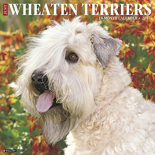 Wheaten Terriers 2017 Wall Calendar