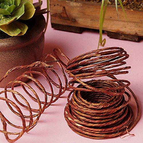(Natural Wrapped Wire - 40 Feet )